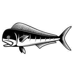 Mahi fish design element for poster card vector