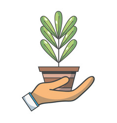 Plant with leaves inside flowerpot design in the vector