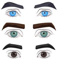 Set male eyes vector