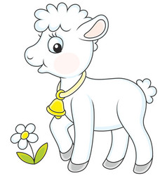 small white lamb vector image
