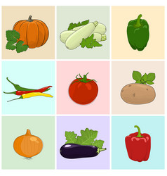 Colored icons fresh vegetables vector
