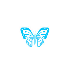 creative blue butterfly logo vector image