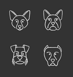 dogs breeds chalk icons set vector image