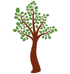 Elm tree vector
