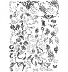 Flowers and floral collection vector