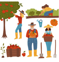 harvesting people set farmers doing farming job vector image