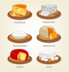 roquefort and parmesan mimolette and gouda feta vector image
