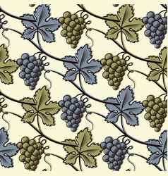 seamless pattern of green and blue grape vector image