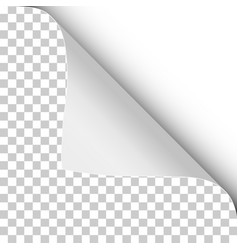 Sheet transparent paper with twisted upper vector