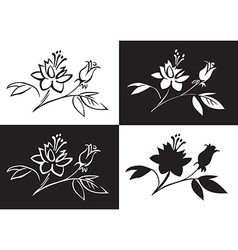 drawing flower rose vector image vector image