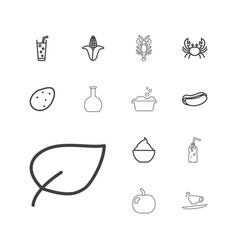 13 fresh icons vector