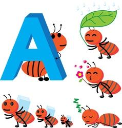 A ant vector