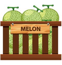 A crate of melon vector