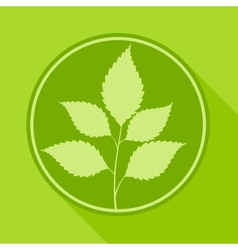 Branch with leaves in round vector image