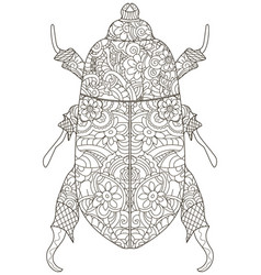 darkling beetle anti stress coloring book vector image
