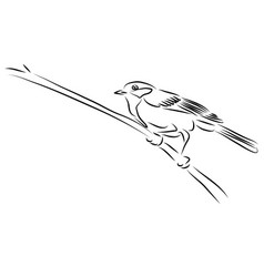 digital art black and white bird vector image