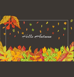 hello autumn banner with bright autumn birch elm vector image