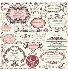 set calligraphic design elements and floral vector image