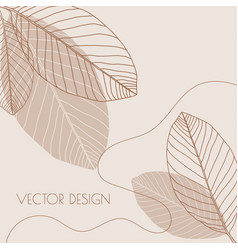 Abstract background with organic shapes vector