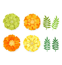 decorative orange green yellow marigolds and vector image
