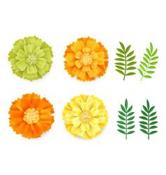 decorative orange green yellow marigolds vector image