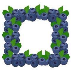 Frame blueberries vector