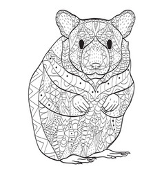 Rodent hamster coloring for adults vector