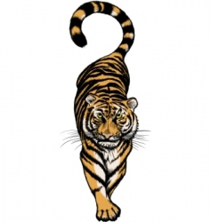crouching tiger vector image vector image