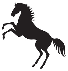 horse hold vector image vector image