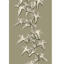 Ivy sketch vector image