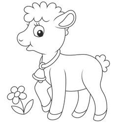 small curly lamb vector image