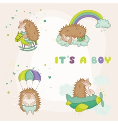 Baby Hedgehog Set - for Baby Shower vector image vector image