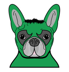 superhero dog in green with tangled hair vector image