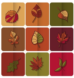 Autumn leaves icon Red yellow and green leaves of vector image