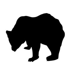 bear silhouette isolated on white background vector image