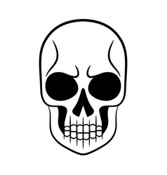 black and white of human skull vector image
