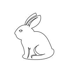 Bunny animal nature vector