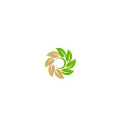 circle leaf organic ornament logo vector image