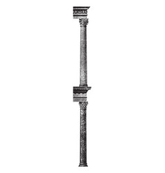 Corinthian column in rome roman architecture vector