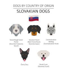 Dogs country belgium 1 vector
