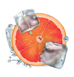half a grapefruit with ice cubes and water vector image
