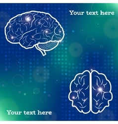 Human brain projections vector image