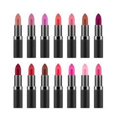 lipstick collection in different colors vector image