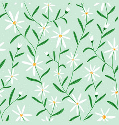 daisy flowers on mint seamless pattern vector image