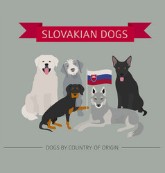 dogs by country irish 3 vector image