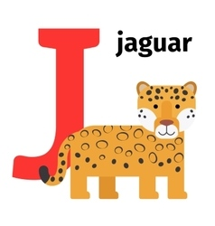 English animals zoo alphabet letter j vector