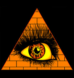Eye providence all seeing in triangle vector
