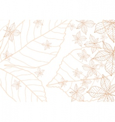 Leaves vector