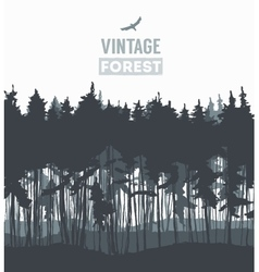 Pine forest hand drawn vector image