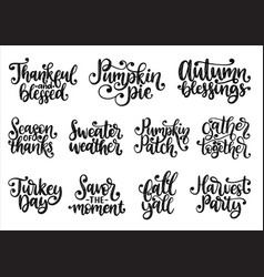 set with lettering for thanksgiving day season vector image